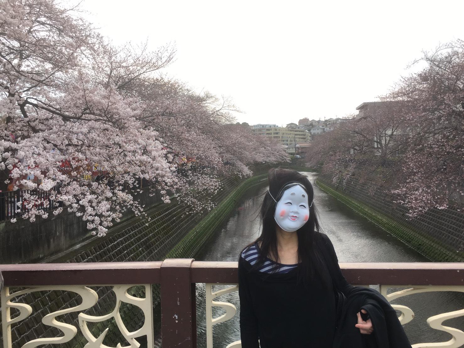 お花見@大岡川